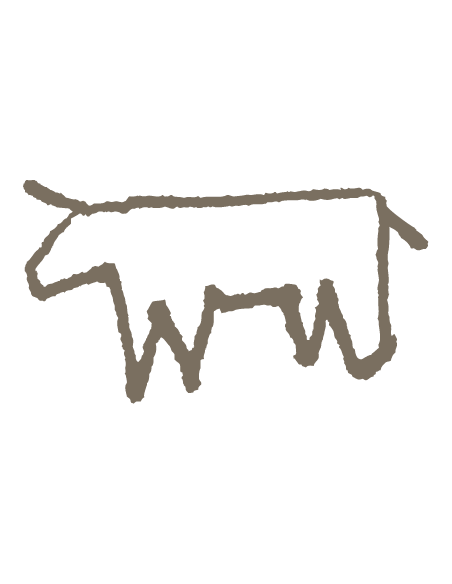 Cow cheese